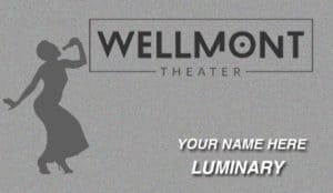 Wellmont VIP Club: Luminary
